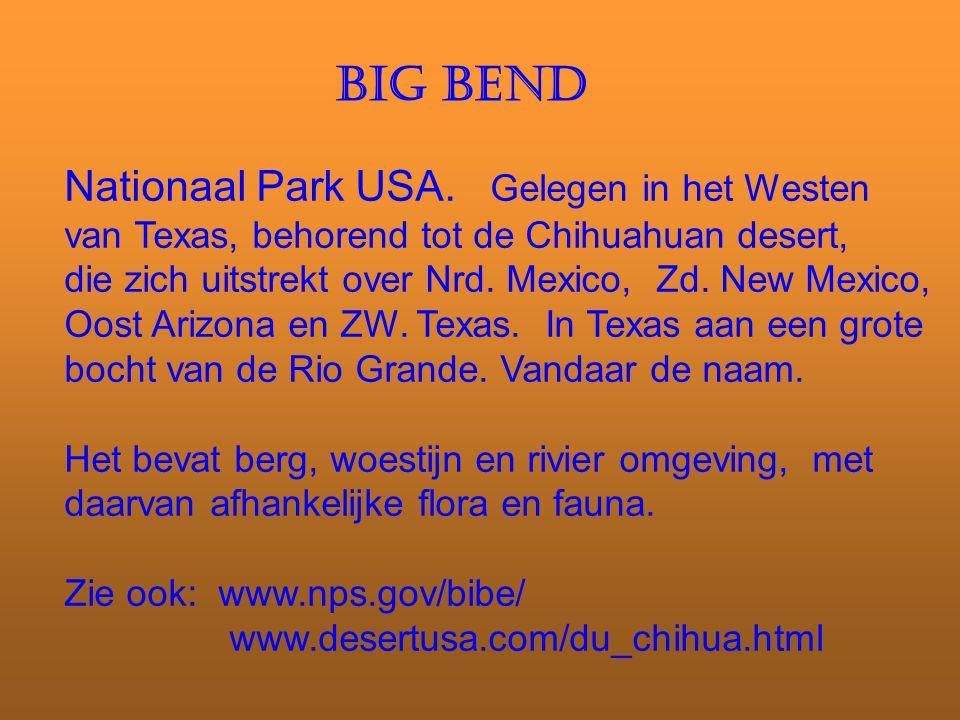 BIG BEND Nationaal Park USA. Gelegen in het Westen van Texas, behorend tot de Chihuahuan desert, die zich uitstrekt over Nrd. Mexico, Zd. New Mexico,