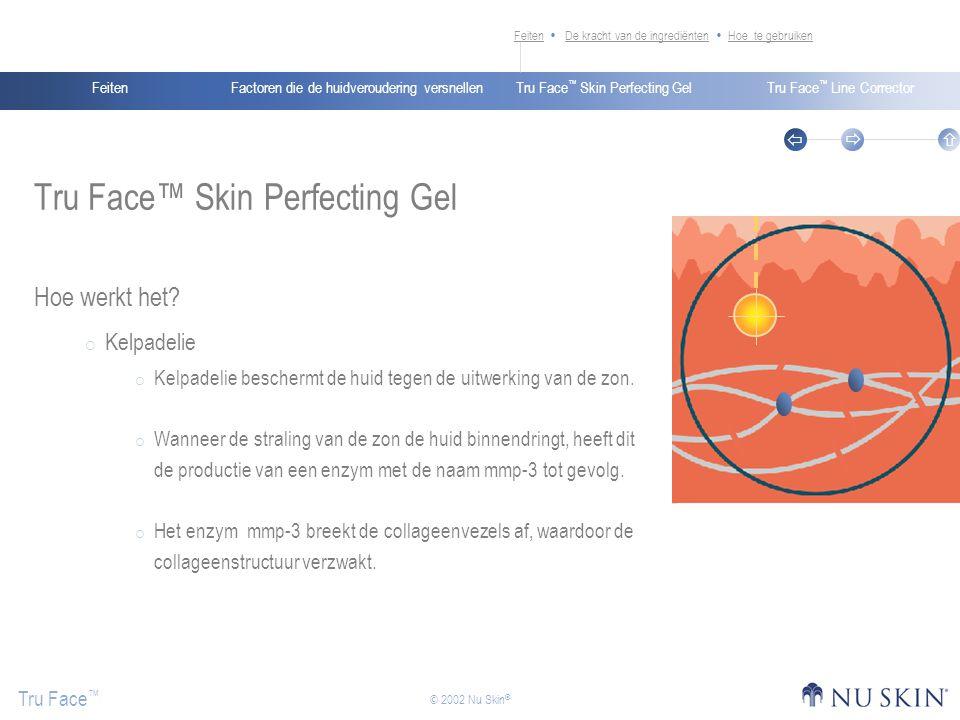 Factoren die de huidveroudering versnellenFeitenTru Face ™ Skin Perfecting GelTru Face ™ Line Corrector Tru Face ™    © 2002 Nu Skin ® Tru Face™ Skin Perfecting Gel Hoe werkt het.