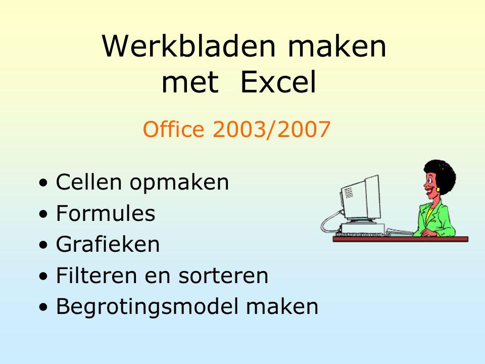 Werkbladen maken met Excel Cellen opmaken Formules Grafieken Filteren en sorteren Begrotingsmodel maken Office 2003/2007
