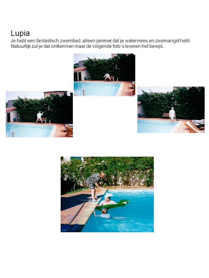 Lupia Je hebt een fantastisch zwembad, alleen jammer dat je watervrees en zwemangst hebt. Natuurlijk zul je dat ontkennen maar de volgende foto´s leve