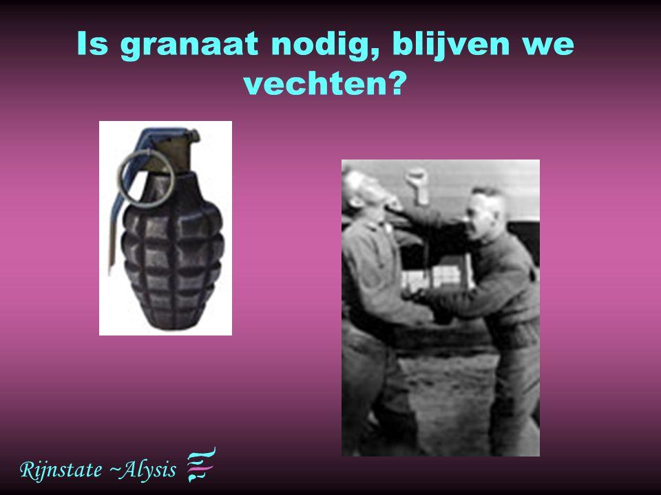 Rijnstate ~Alysis Is granaat nodig, blijven we vechten?