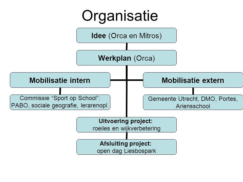Organisatie Idee (Orca en Mitros) Werkplan (Orca) Uitvoering project: roeiles en wijkverbetering Afsluiting project: open dag Liesbospark Mobilisatie