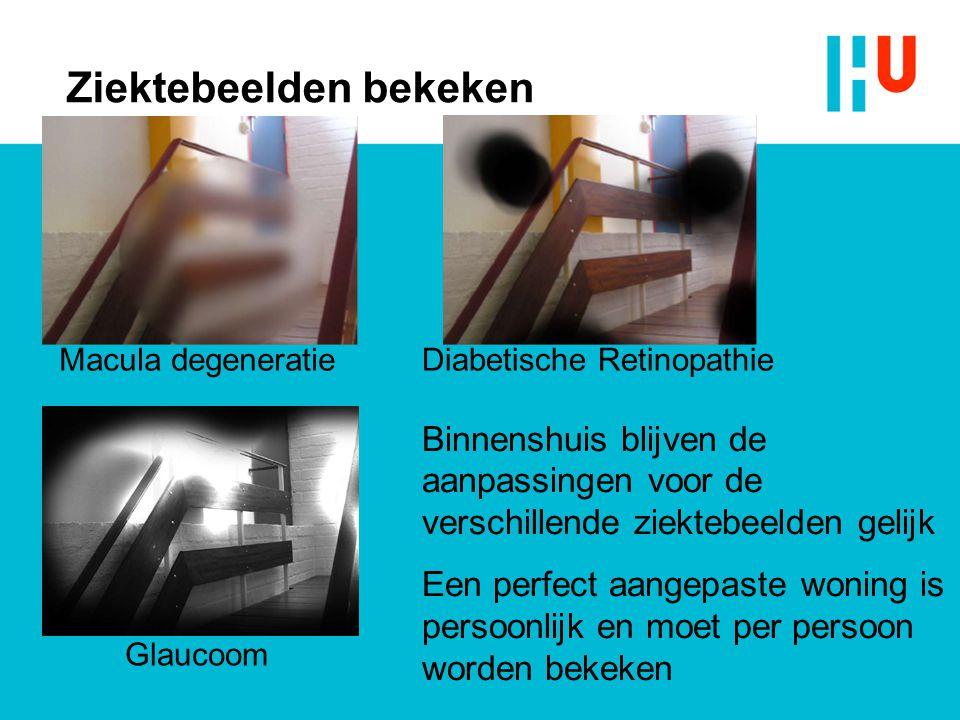 Ziektebeelden bekeken Diabetische Retinopathie Glaucoom Macula degeneratie Binnenshuis blijven de aanpassingen voor de verschillende ziektebeelden gel