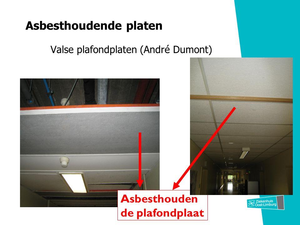 Asbesthoudende platen Valse plafondplaten (André Dumont) Asbesthouden de plafondplaat