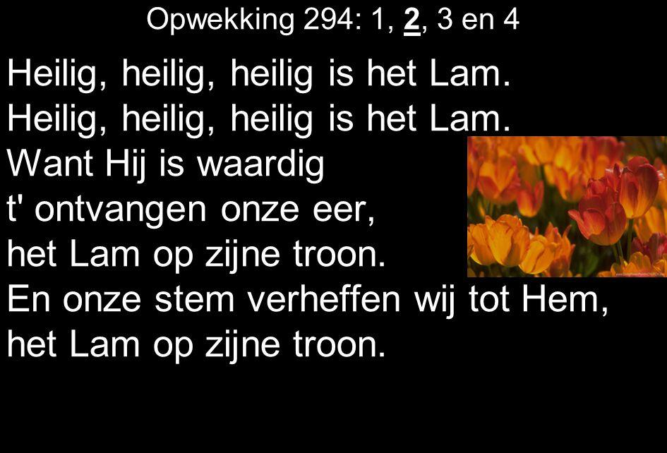 Opwekking 294: 1, 2, 3 en 4 Heilig, heilig, heilig is het Lam. Want Hij is waardig t' ontvangen onze eer, het Lam op zijne troon. En onze stem verheff