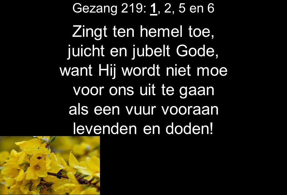 Gezang 219: 1, 2, 5 en 6 Zingt ten hemel toe, juicht en jubelt Gode, want Hij wordt niet moe voor ons uit te gaan als een vuur vooraan levenden en dod