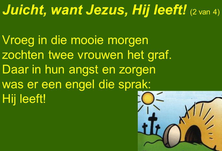 Juicht, want Jezus, Hij leeft! (2 van 4) Vroeg in die mooie morgen zochten twee vrouwen het graf. Daar in hun angst en zorgen was er een engel die spr