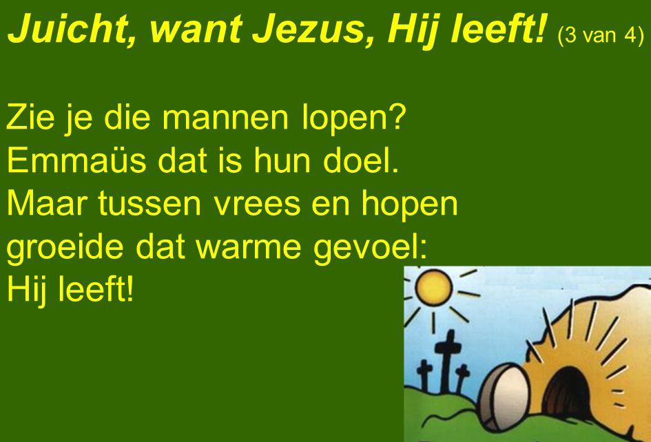 Juicht, want Jezus, Hij leeft! (3 van 4) Zie je die mannen lopen? Emmaüs dat is hun doel. Maar tussen vrees en hopen groeide dat warme gevoel: Hij lee