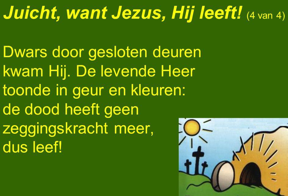 Juicht, want Jezus, Hij leeft! (4 van 4) Dwars door gesloten deuren kwam Hij. De levende Heer toonde in geur en kleuren: de dood heeft geen zeggingskr