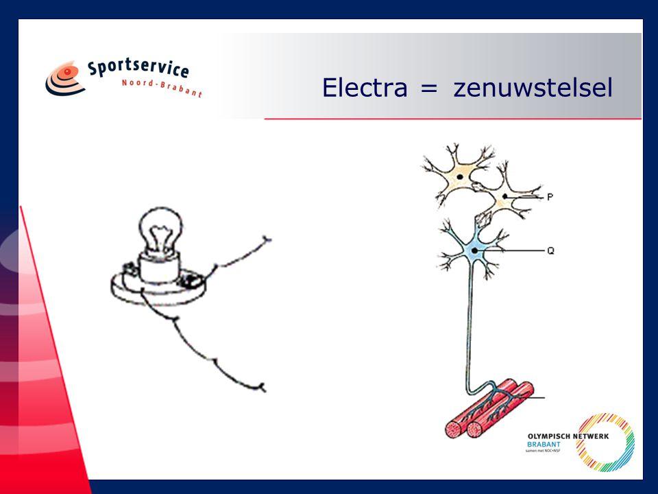 Electra = zenuwstelsel