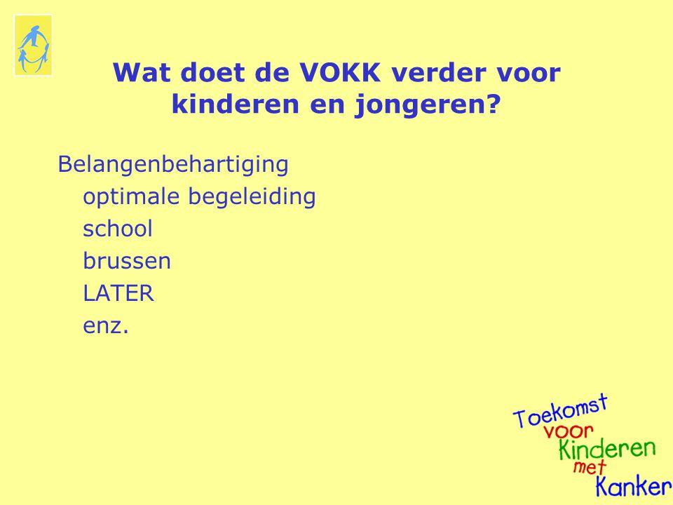 Wat doet de VOKK verder voor kinderen en jongeren? Belangenbehartiging optimale begeleiding school brussen LATER enz.