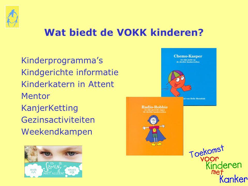 Wat biedt de VOKK kinderen? Kinderprogramma's Kindgerichte informatie Kinderkatern in Attent Mentor KanjerKetting Gezinsactiviteiten Weekendkampen