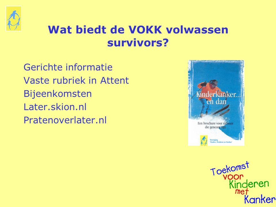 Wat biedt de VOKK volwassen survivors? Gerichte informatie Vaste rubriek in Attent Bijeenkomsten Later.skion.nl Pratenoverlater.nl