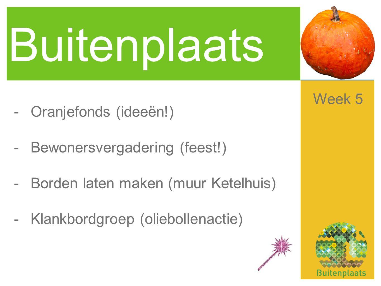 Buitenplaats -Oranjefonds (ideeën!) -Bewonersvergadering (feest!) -Borden laten maken (muur Ketelhuis) -Klankbordgroep (oliebollenactie) Week 5