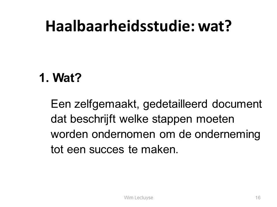 Haalbaarheidsstudie: wat? Een zelfgemaakt, gedetailleerd document dat beschrijft welke stappen moeten worden ondernomen om de onderneming tot een succ
