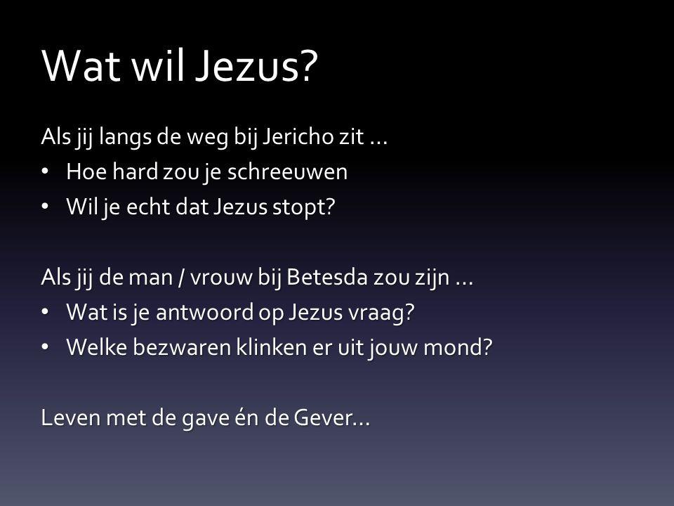 Wat wil Jezus? Als jij langs de weg bij Jericho zit … Hoe hard zou je schreeuwen Hoe hard zou je schreeuwen Wil je echt dat Jezus stopt? Wil je echt d