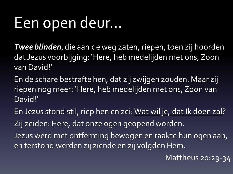 Een open deur… Twee blinden, die aan de weg zaten, riepen, toen zij hoorden dat Jezus voorbijging: 'Here, heb medelijden met ons, Zoon van David!' En