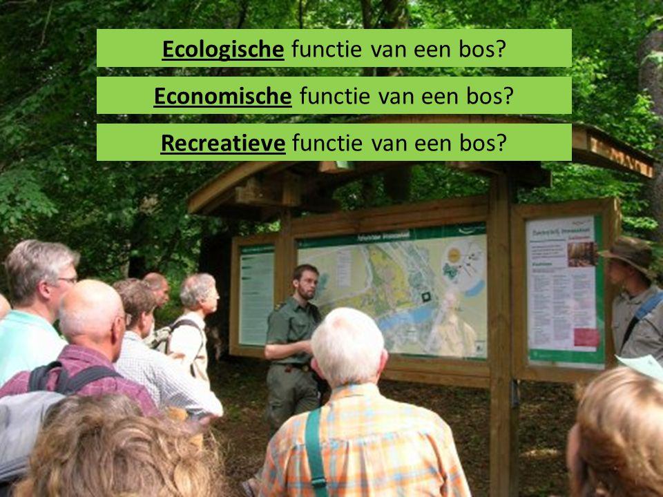 Recreatieve functie van een bos? Ecologische functie van een bos? Economische functie van een bos?
