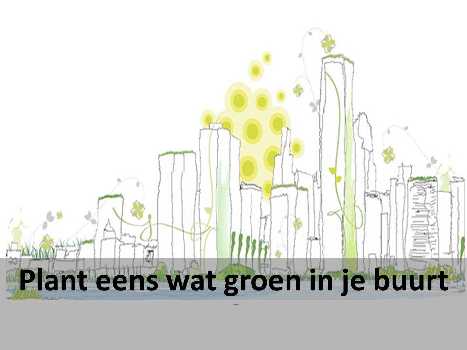 Plant eens wat groen in je buurt