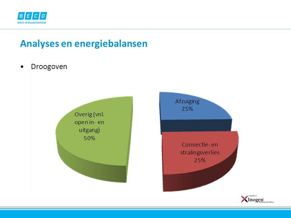 Analyses en energiebalansen Droogoven