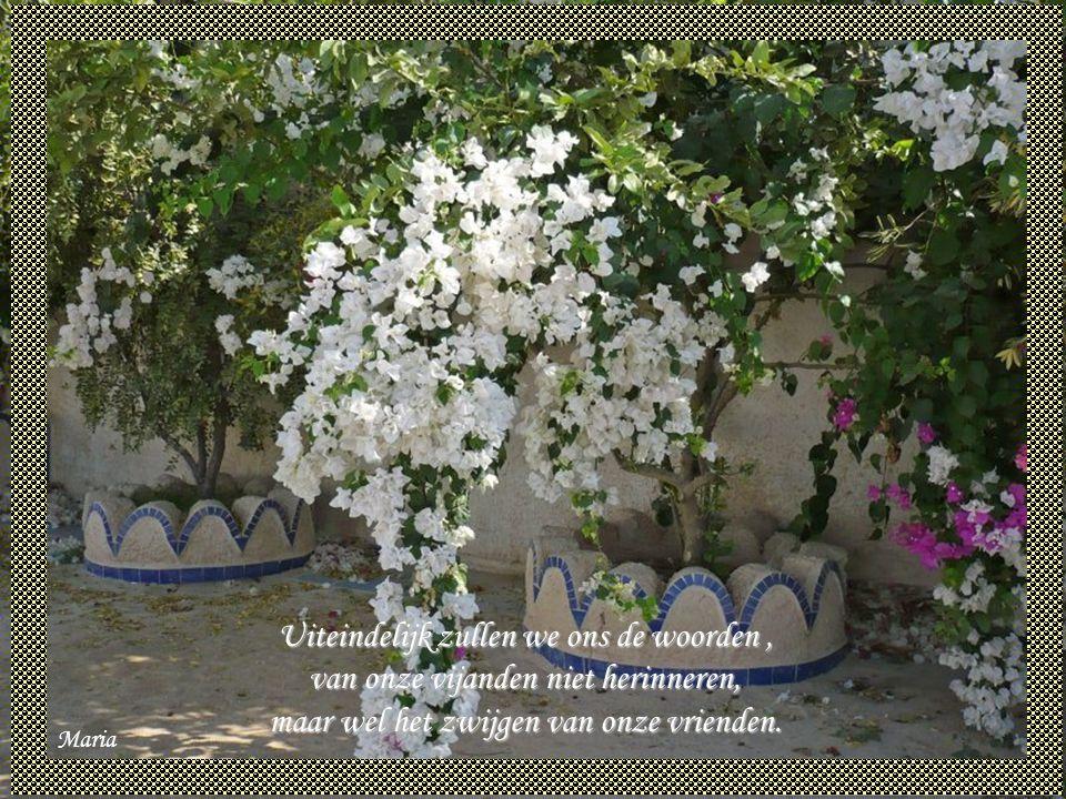 De herinnering is een kerkhof, waarop meer kruisen dan bloemen staan.