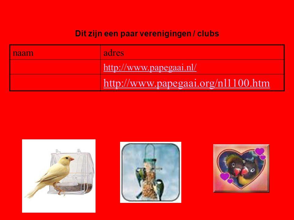 naamadres http://www.papegaai.nl/ http://www.papegaai.org/nl1100.htm Dit zijn een paar verenigingen / clubs Als er geen verenigingen zijn, klik dan met de rechter muisknop op de 5e dia; klik op knippen