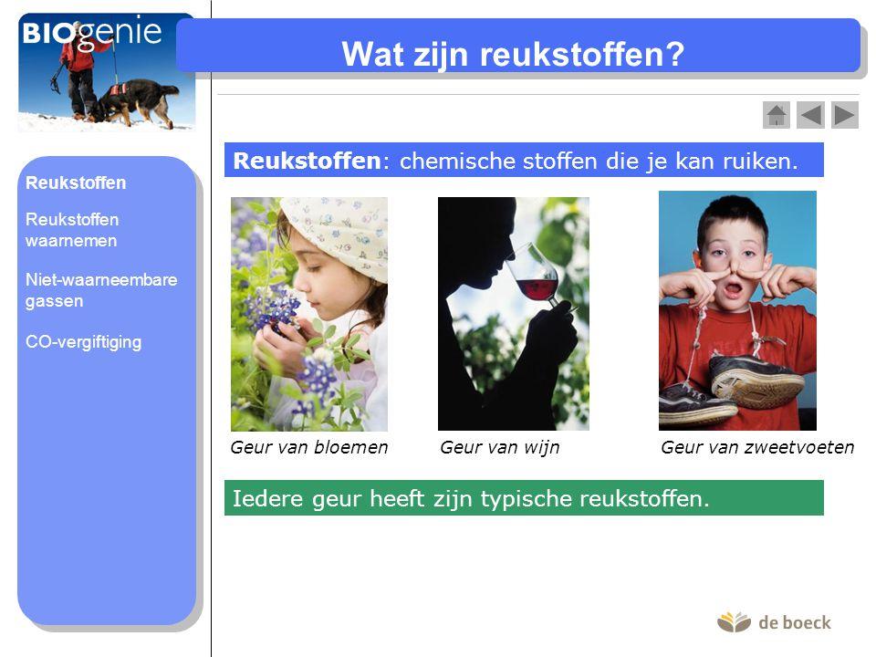Wat zijn reukstoffen? Reukstoffen: chemische stoffen die je kan ruiken. Iedere geur heeft zijn typische reukstoffen. Geur van bloemen Geur van zweetvo