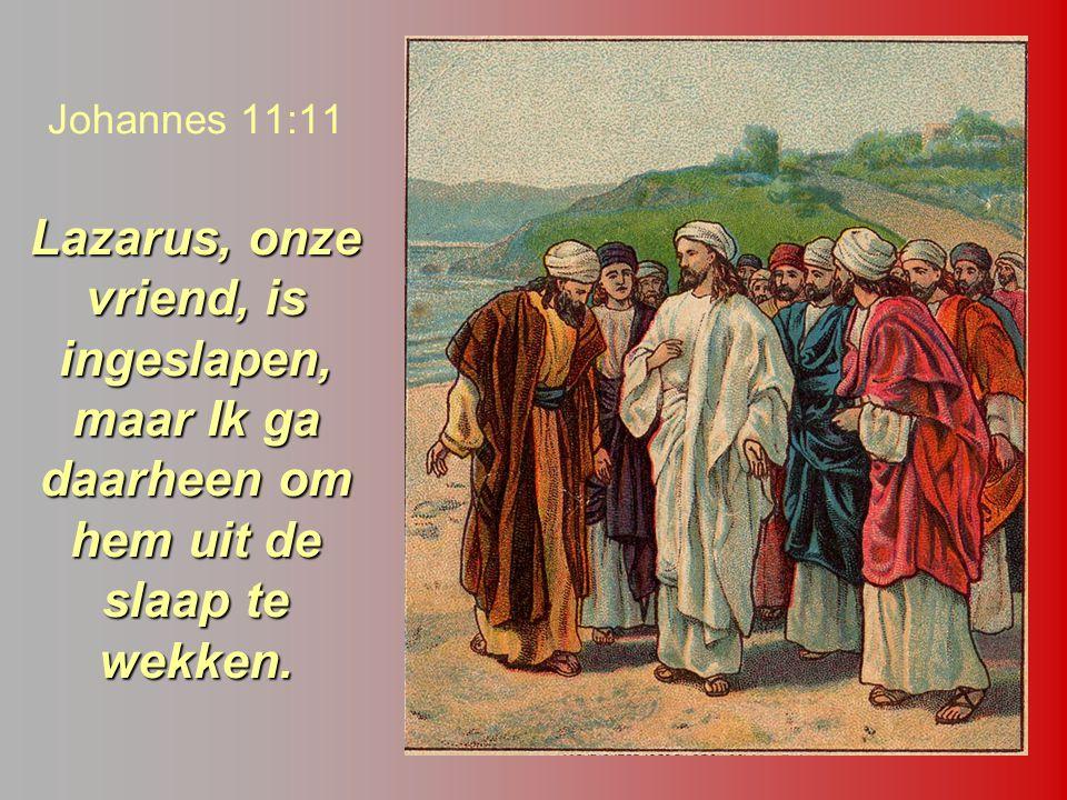 Lazarus, onze vriend, is ingeslapen, maar Ik ga daarheen om hem uit de slaap te wekken. Johannes 11:11 Lazarus, onze vriend, is ingeslapen, maar Ik ga
