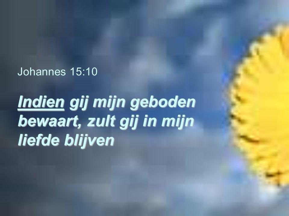Indien gij mijn geboden bewaart, zult gij in mijn liefde blijven Johannes 15:10 Indien gij mijn geboden bewaart, zult gij in mijn liefde blijven
