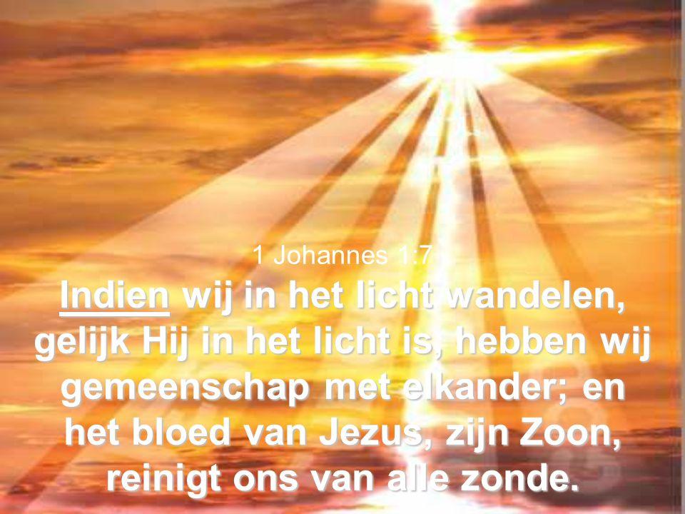Indien wij in het licht wandelen, gelijk Hij in het licht is, hebben wij gemeenschap met elkander; en het bloed van Jezus, zijn Zoon, reinigt ons van
