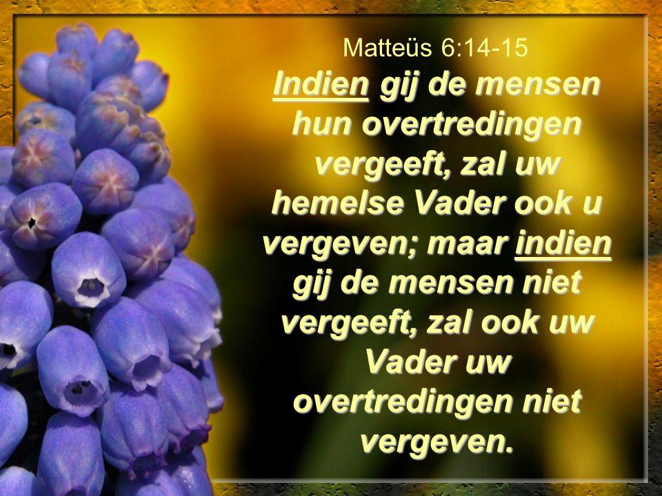 Indien gij de mensen hun overtredingen vergeeft, zal uw hemelse Vader ook u vergeven; maar indien gij de mensen niet vergeeft, zal ook uw Vader uw ove