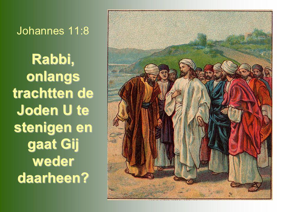 Rabbi, onlangs trachtten de Joden U te stenigen en gaat Gij weder daarheen? Johannes 11:8 Rabbi, onlangs trachtten de Joden U te stenigen en gaat Gij