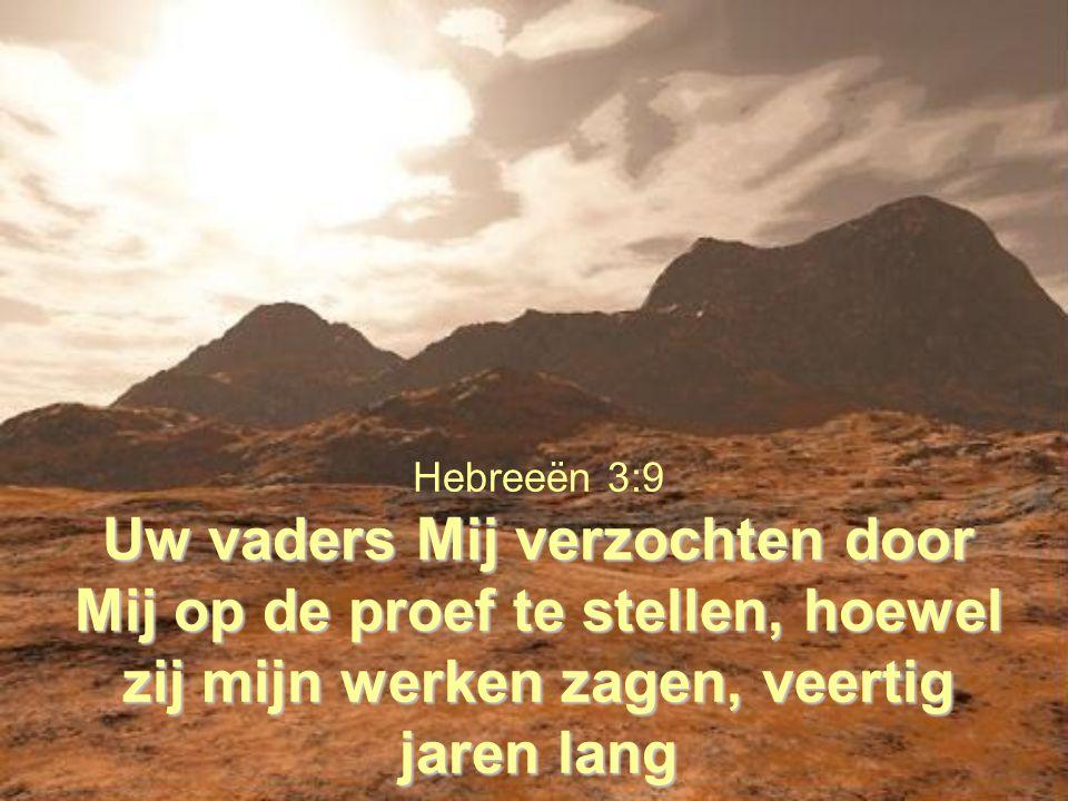 Uw vaders Mij verzochten door Mij op de proef te stellen, hoewel zij mijn werken zagen, veertig jaren lang Hebreeën 3:9 Uw vaders Mij verzochten door