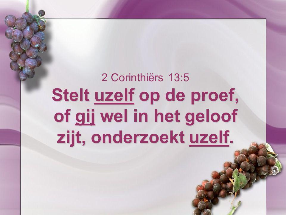 Stelt uzelf op de proef, of gij wel in het geloof zijt, onderzoekt uzelf. 2 Corinthiërs 13:5 Stelt uzelf op de proef, of gij wel in het geloof zijt, o