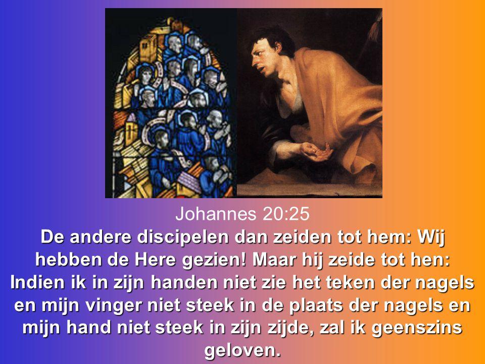 De andere discipelen dan zeiden tot hem: Wij hebben de Here gezien! Maar hij zeide tot hen: Indien ik in zijn handen niet zie het teken der nagels en