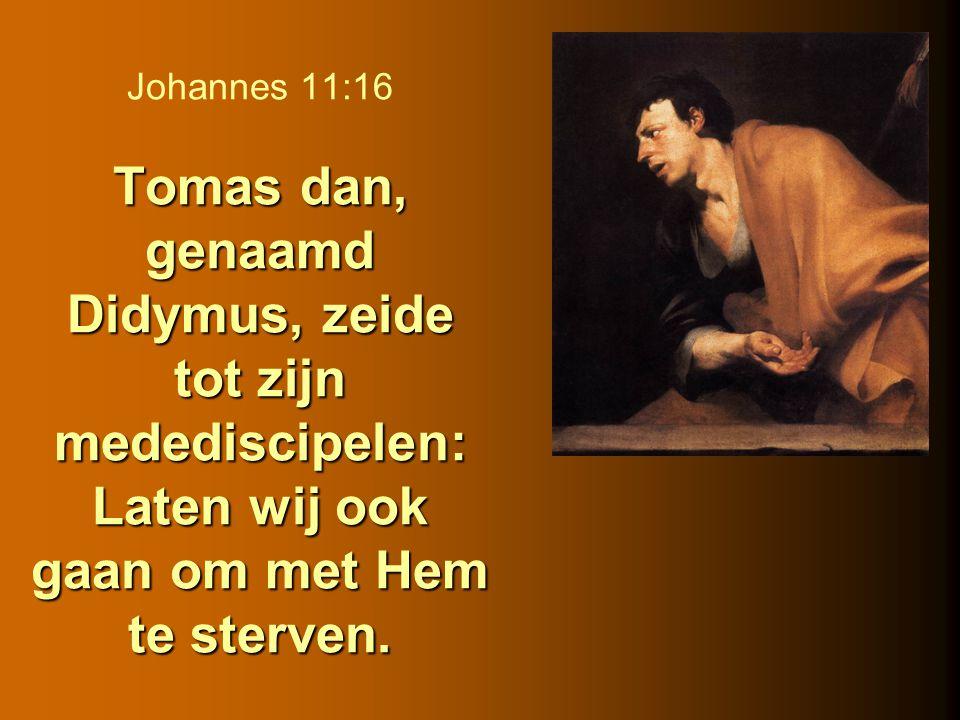 Tomas dan, genaamd Didymus, zeide tot zijn medediscipelen: Laten wij ook gaan om met Hem te sterven. Johannes 11:16 Tomas dan, genaamd Didymus, zeide