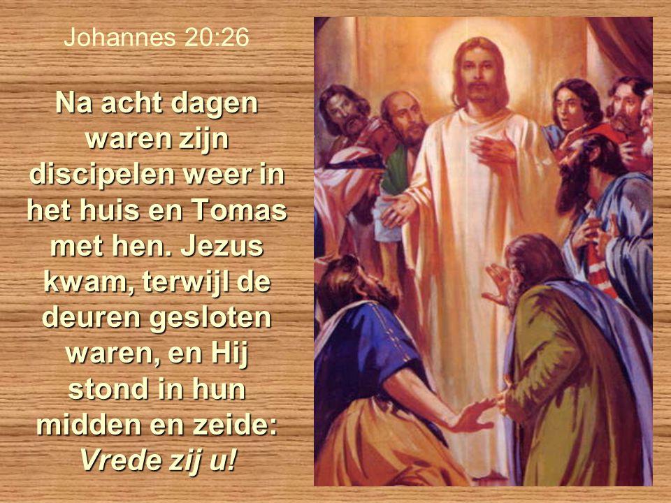 Na acht dagen waren zijn discipelen weer in het huis en Tomas met hen. Jezus kwam, terwijl de deuren gesloten waren, en Hij stond in hun midden en zei
