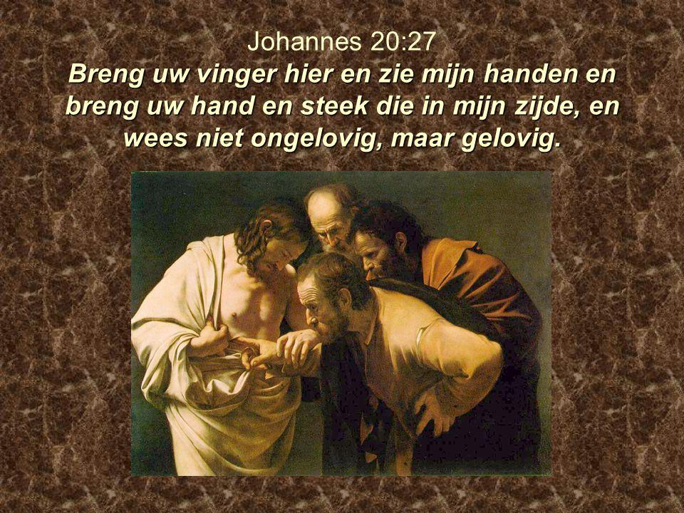 Breng uw vinger hier en zie mijn handen en breng uw hand en steek die in mijn zijde, en wees niet ongelovig, maar gelovig. Johannes 20:27 Breng uw vin