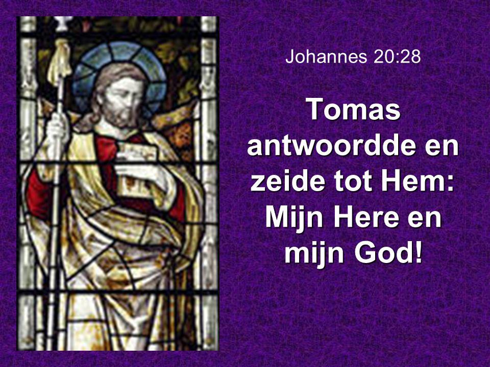 Tomas antwoordde en zeide tot Hem: Mijn Here en mijn God! Johannes 20:28 Tomas antwoordde en zeide tot Hem: Mijn Here en mijn God!
