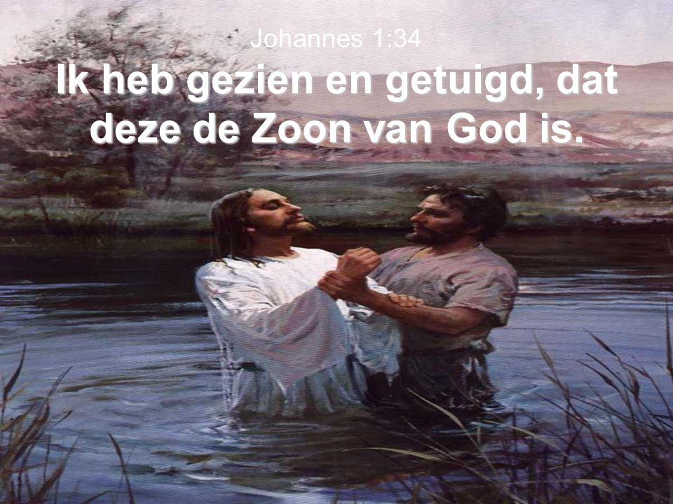 Ik heb gezien en getuigd, dat deze de Zoon van God is. Johannes 1:34 Ik heb gezien en getuigd, dat deze de Zoon van God is.