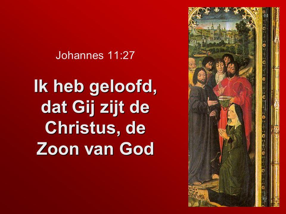 Ik heb geloofd, dat Gij zijt de Christus, de Zoon van God Johannes 11:27 Ik heb geloofd, dat Gij zijt de Christus, de Zoon van God