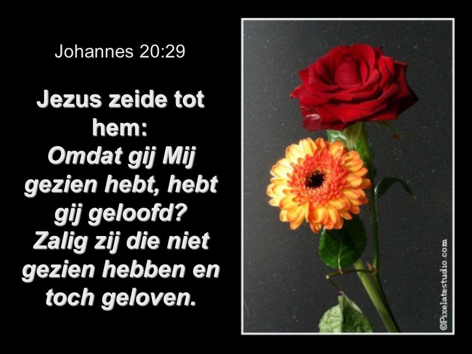 Jezus zeide tot hem: Omdat gij Mij gezien hebt, hebt gij geloofd? Zalig zij die niet gezien hebben en toch geloven. Johannes 20:29 Jezus zeide tot hem