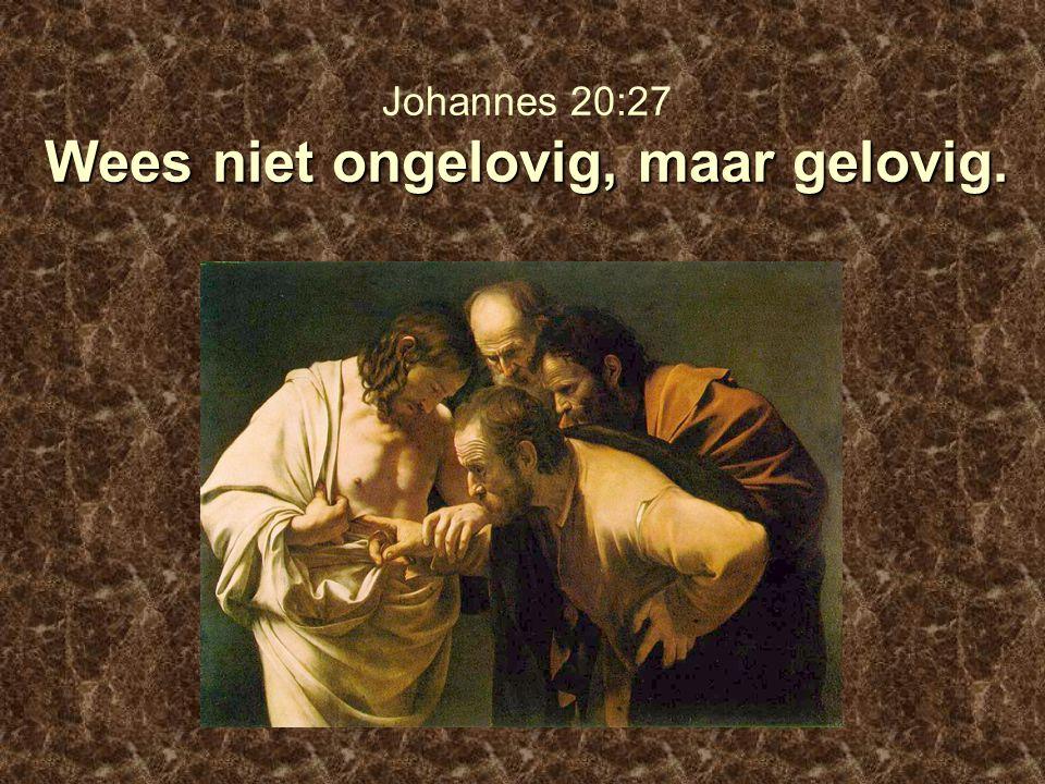 Wees niet ongelovig, maar gelovig. Johannes 20:27 Wees niet ongelovig, maar gelovig.