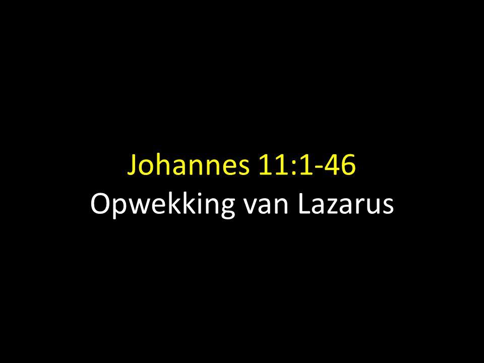 Johannes 11:1-46 Opwekking van Lazarus