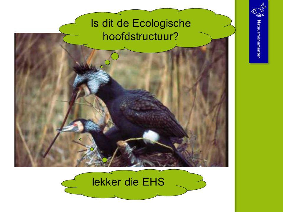Is dit de Ecologische hoofdstructuur? lekker die EHS