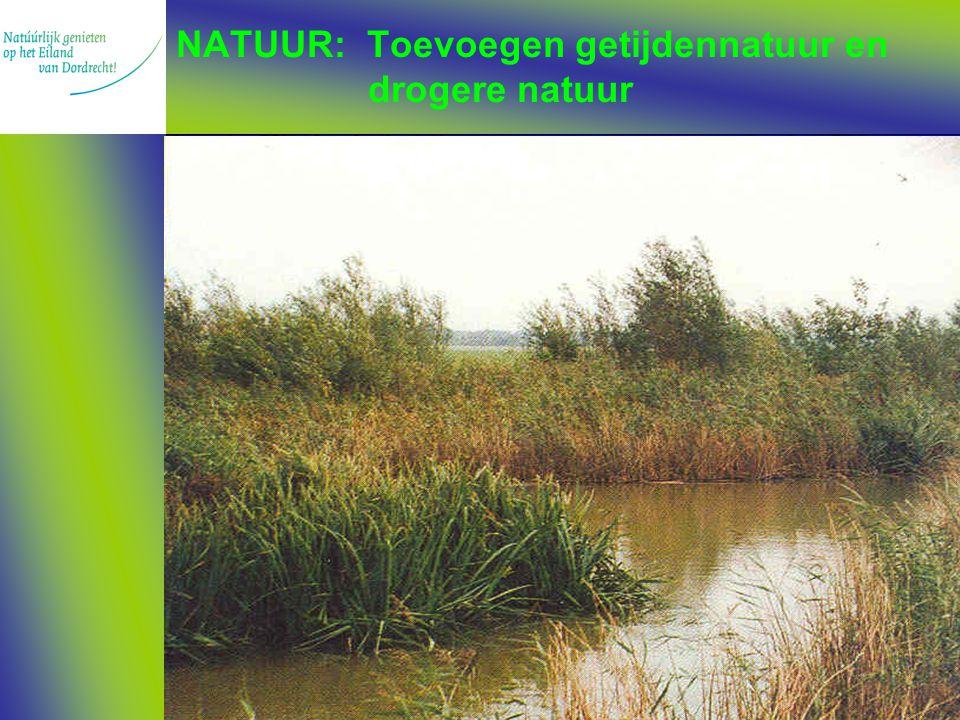 NATUUR: Toevoegen getijdennatuur en drogere natuur