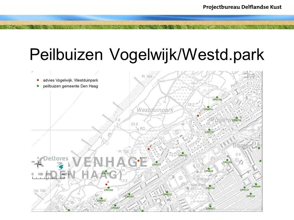 Peilbuizen Vogelwijk/Westd.park