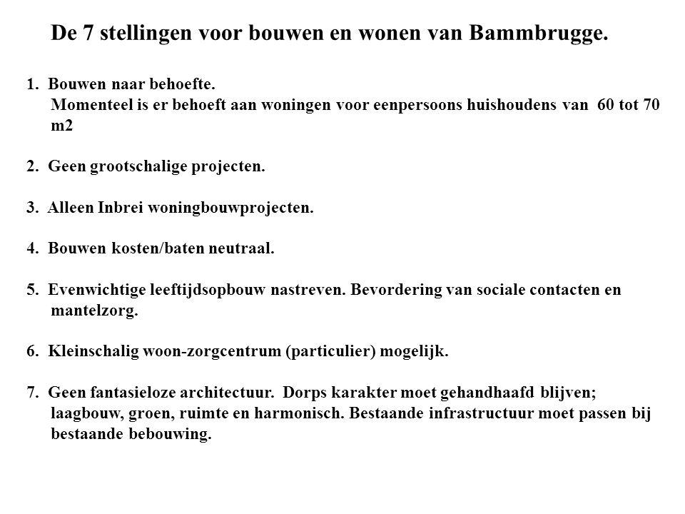 De 7 stellingen voor bouwen en wonen van Bammbrugge.