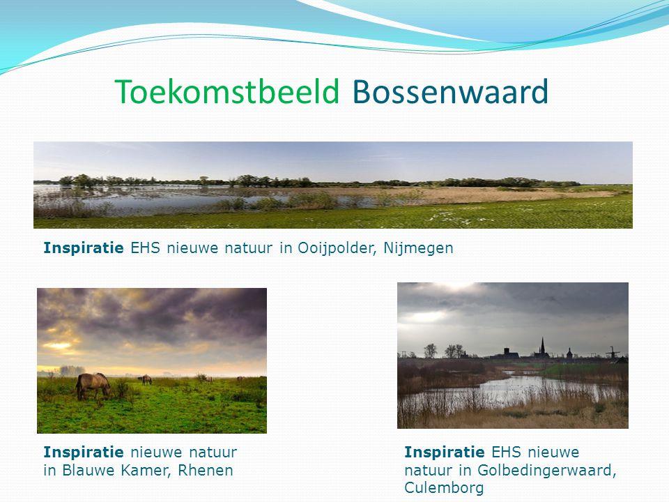 Inspiratie EHS nieuwe natuur in Ooijpolder, Nijmegen Inspiratie nieuwe natuur in Blauwe Kamer, Rhenen Inspiratie EHS nieuwe natuur in Golbedingerwaard, Culemborg Toekomstbeeld Bossenwaard