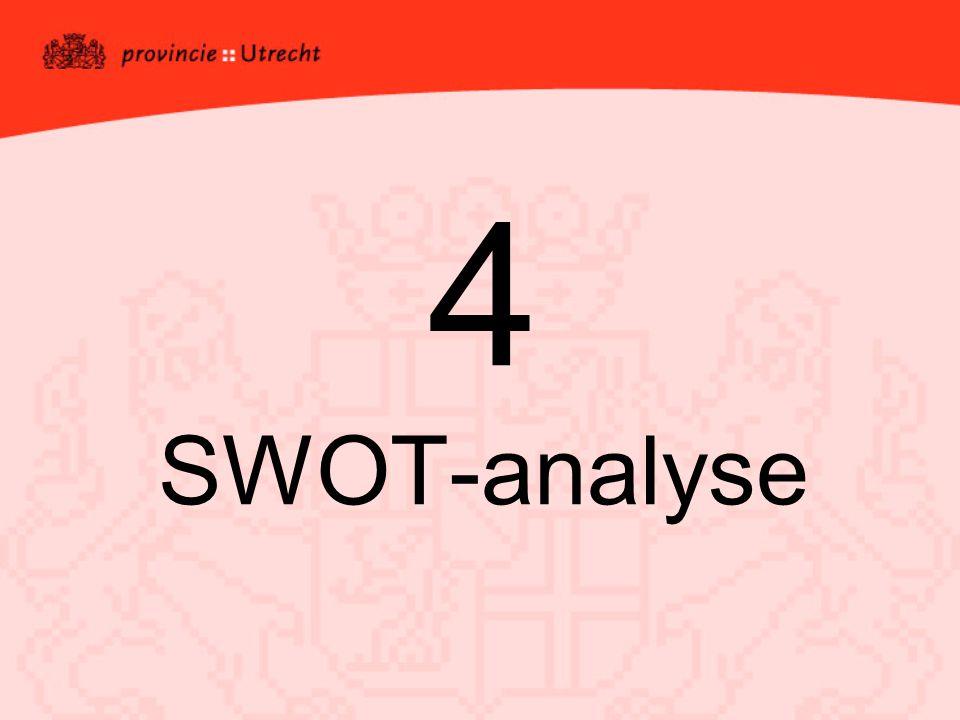 4 SWOT-analyse